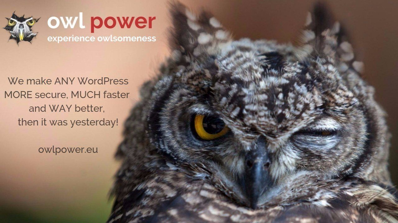 click for video presentation of owl power EUROPE